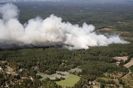 Metsäpalot yleiskuva etela